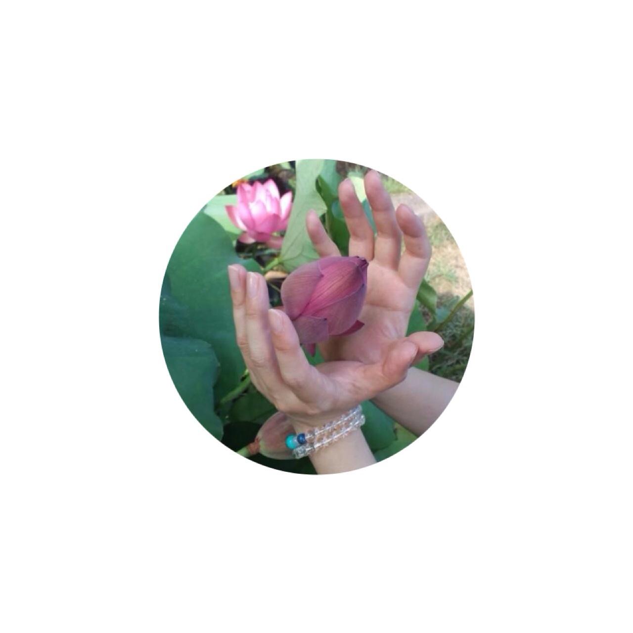 * ピンク色のご報告 *_e0290872_12403859.jpg