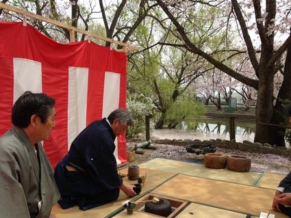 「桜・お花見の会」_f0259324_14293435.jpg