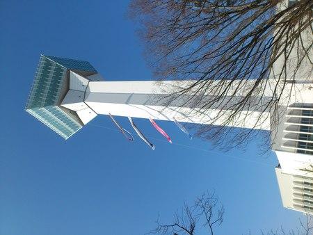 五稜郭タワーとこいのぼり_b0106766_21561587.jpg