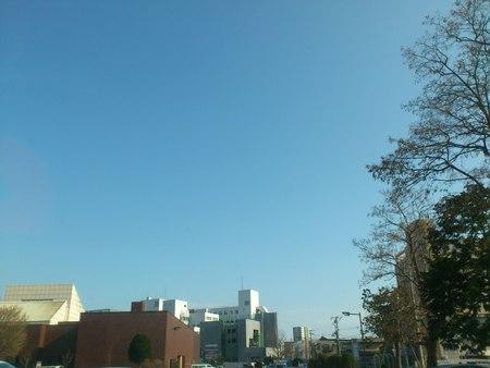五稜郭タワーとこいのぼり_b0106766_21561650.jpg