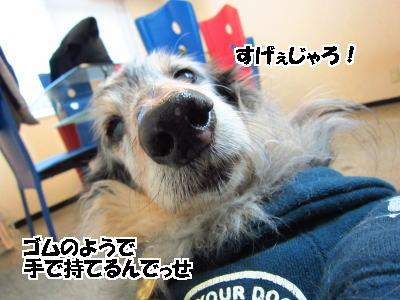 d0020869_1330358.jpg