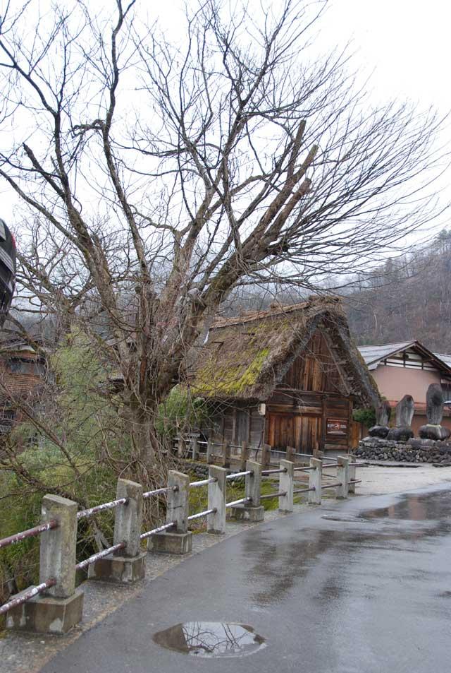 今頃ですが白川郷の写真です_b0120492_1539687.jpg