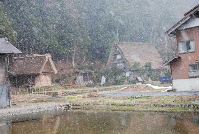 今頃ですが白川郷の写真です_b0120492_15463970.jpg