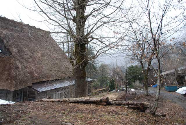 今頃ですが白川郷の写真です_b0120492_15574853.jpg