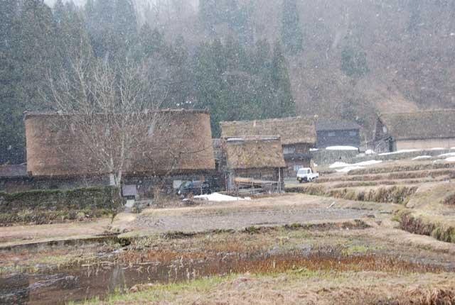 今頃ですが白川郷の写真です_b0120492_168267.jpg