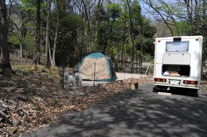 開拓キャンプ!_a0049296_19461115.jpg