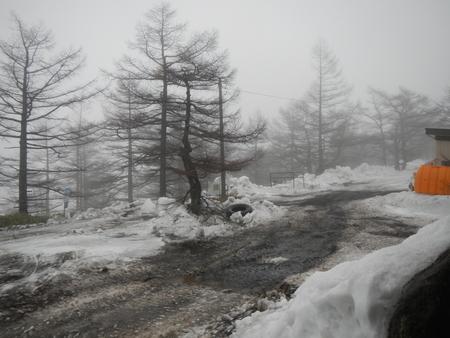 登山道情報_e0120896_1410281.jpg