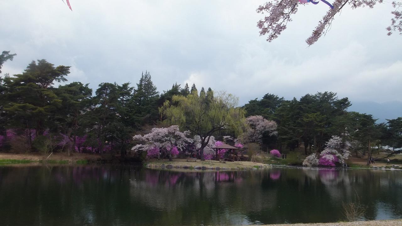 馬見塚のお花見_e0187897_17461578.jpg