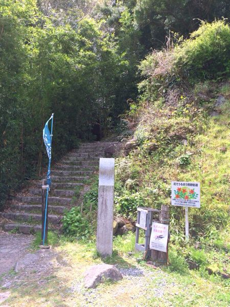 熊野古道@松本峠・花の窟コース_e0292546_704697.jpg