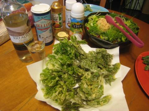 また山菜の季節がやってきました~_e0121558_23180244.jpg