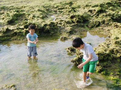「カーミージーの海で遊び隊」結成_c0180460_23132299.jpg