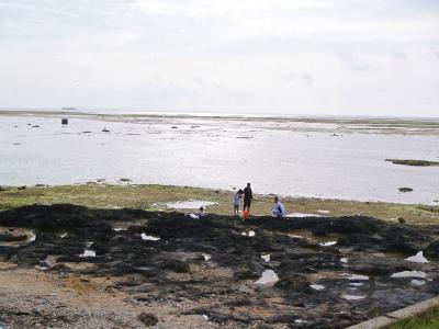 「カーミージーの海で遊び隊」結成_c0180460_2394055.jpg