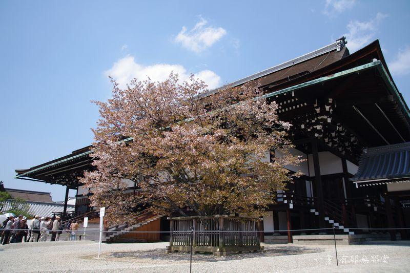 京都御所・春季一般公開 #2_a0157263_20075205.jpg