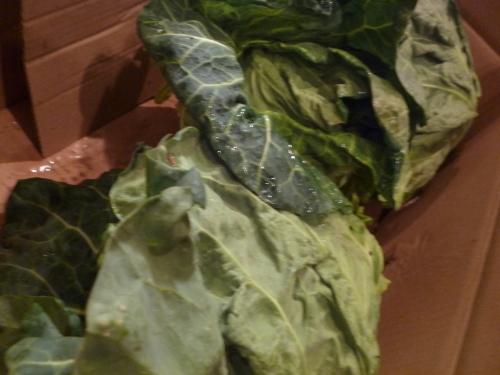 野菜もですね~_e0252966_13052658.jpg