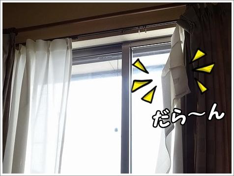 悲惨なカーテン。_b0111376_11485937.jpg