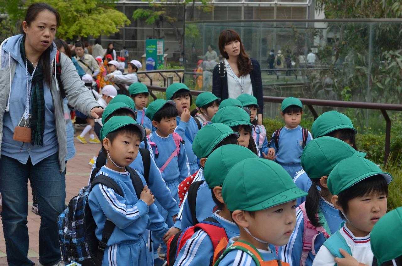 天王寺動物園_b0277979_1963515.jpg
