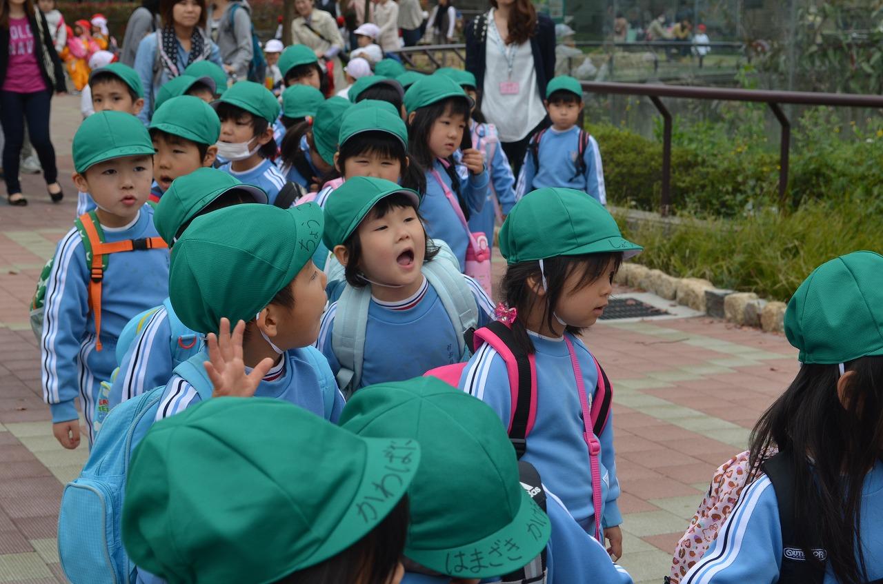 天王寺動物園_b0277979_19637100.jpg