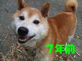 大先輩な俺!_b0038381_17372272.jpg