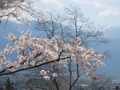 これぞ安曇野の春景色_c0289116_22262146.jpg