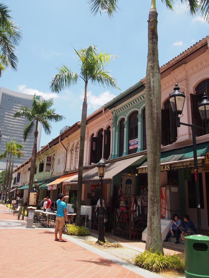 2014 3月 シンガポール (20) アラブストリートは原色が映えるな〜_f0062122_16324225.jpg