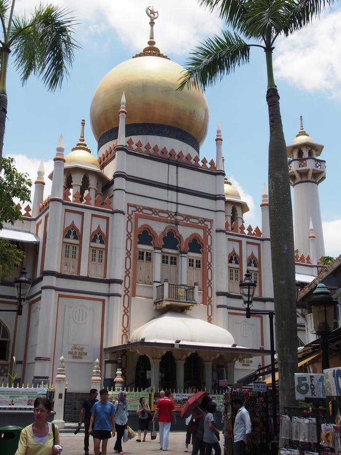 2014 3月 シンガポール (20) アラブストリートは原色が映えるな〜_f0062122_16331196.jpg