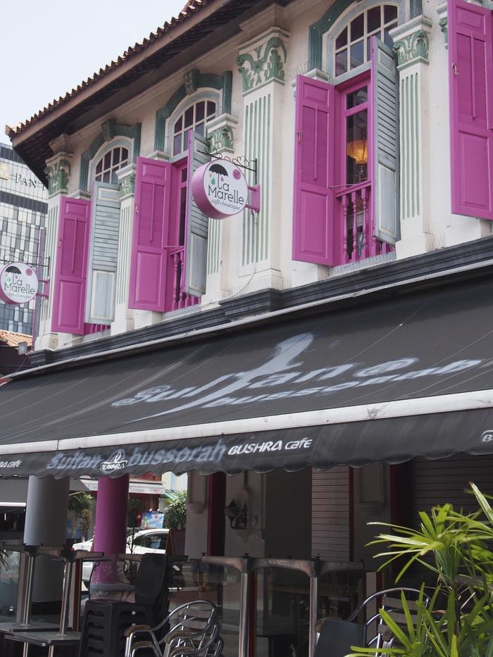 2014 3月 シンガポール (20) アラブストリートは原色が映えるな〜_f0062122_1637997.jpg