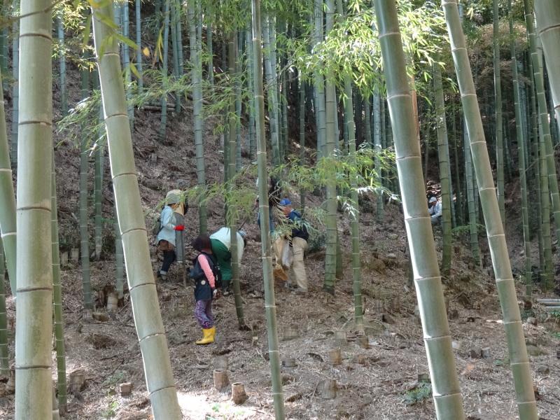 第2回「里香海」多奈川竹林筍狩り_c0108460_20290281.jpg