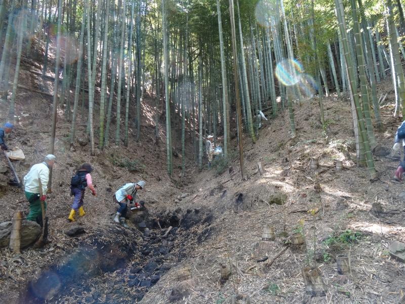 第2回「里香海」多奈川竹林筍狩り_c0108460_20305010.jpg