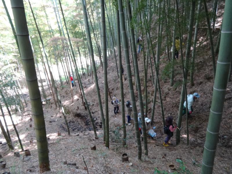 第2回「里香海」多奈川竹林筍狩り_c0108460_20305146.jpg
