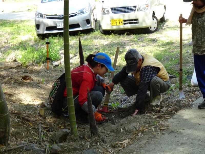 第2回「里香海」多奈川竹林筍狩り_c0108460_20305416.jpg