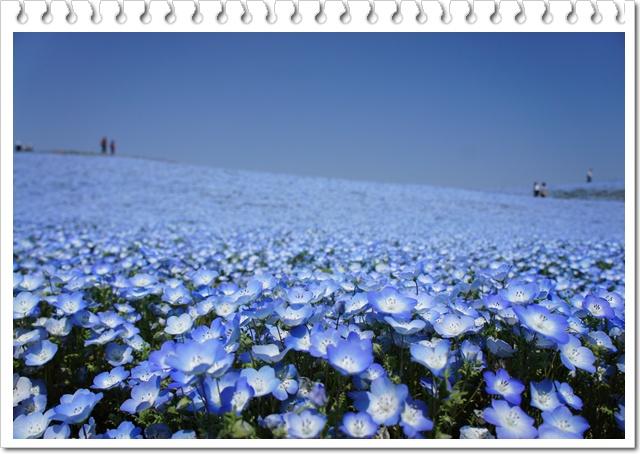 b0192470_2011141.jpg