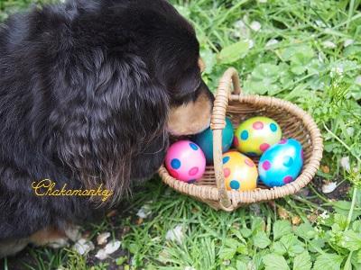 Easter_f0238789_19501795.jpg