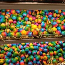 Easter_f0238789_2002024.jpg