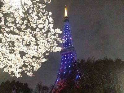 ☆今年の桜〜☆_d0265309_3443574.jpg