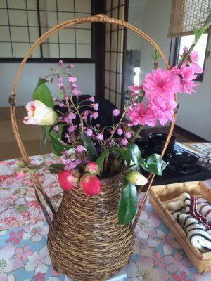 ☆今年の桜〜☆_d0265309_3445975.jpg