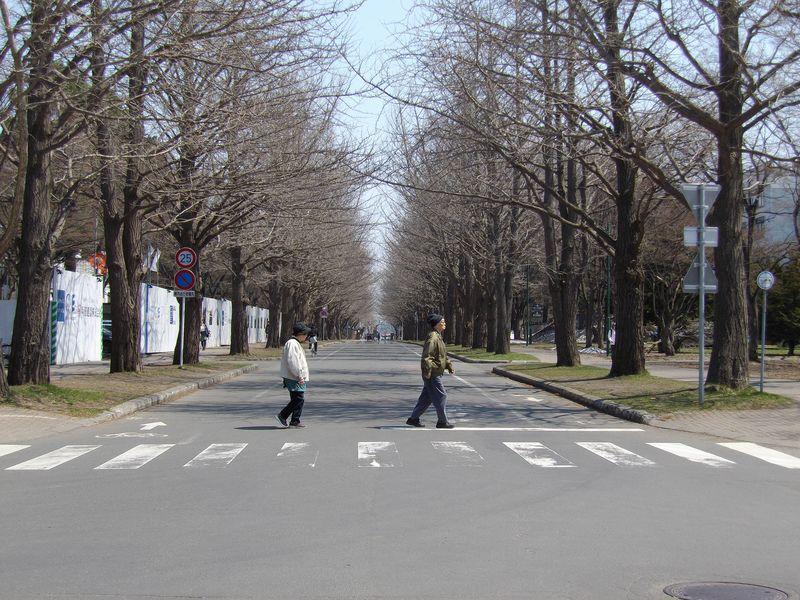 春爛漫_c0025115_20135977.jpg