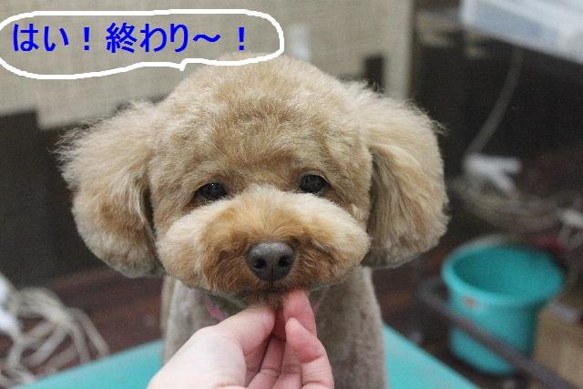 やったぜぇ~!!_b0130018_22474011.jpg