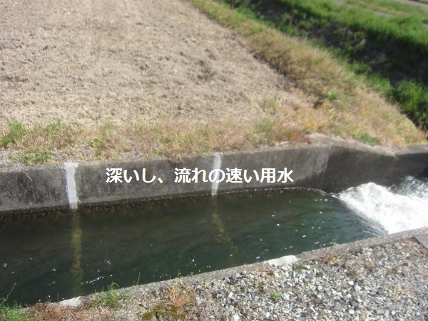 f0143123_10072764.jpg