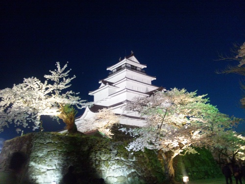 夜桜見物_f0032130_21305184.jpg