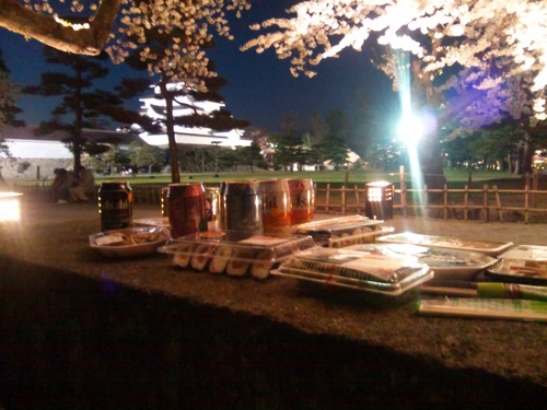 夜桜見物_f0032130_21325881.jpg