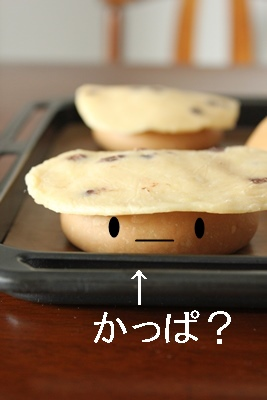 パン教室で「モカチョコパン」と「チキンのクリーム煮」!_a0165538_1127231.jpg