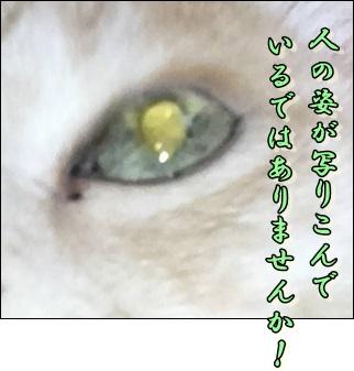 b0151748_14302877.jpg