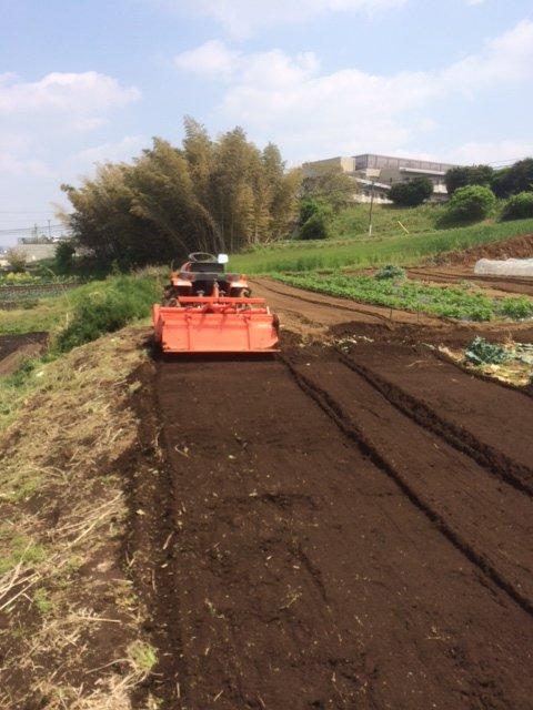 トマトの畝・・耕し中です・・リーキは全部収穫して お店に・・・_c0222448_18580916.jpg
