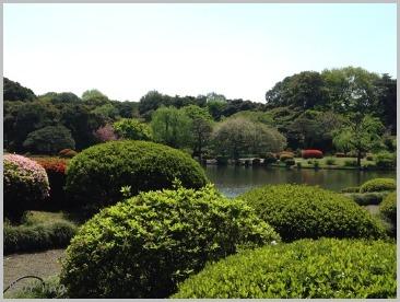 新宿御苑お散歩_e0326953_2341412.jpg