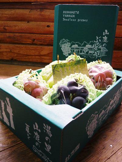 熊本ぶどう 社方園 蕾、花、着果 本物を育てる匠の技 その1_a0254656_19213143.jpg