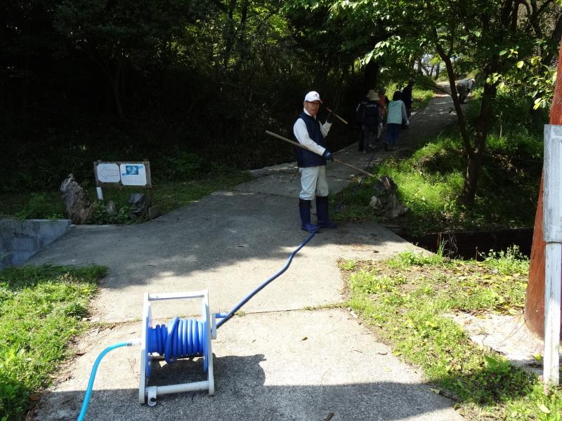 新山整備とササユリ保護作業の継続  in  うみべの森_c0108460_18100485.jpg