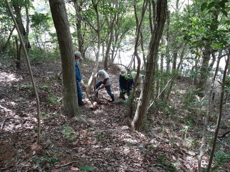 新山整備とササユリ保護作業の継続  in  うみべの森_c0108460_18112187.jpg