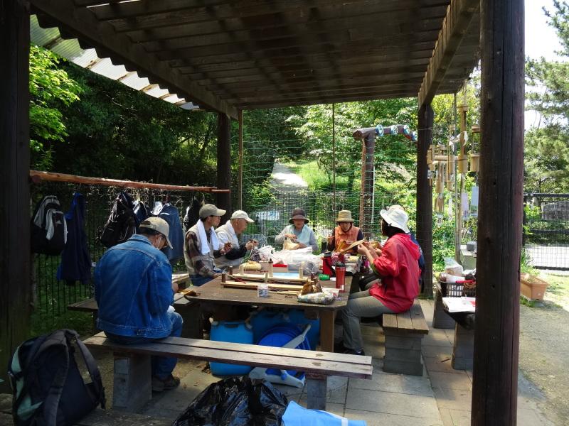 新山整備とササユリ保護作業の継続  in  うみべの森_c0108460_18112358.jpg