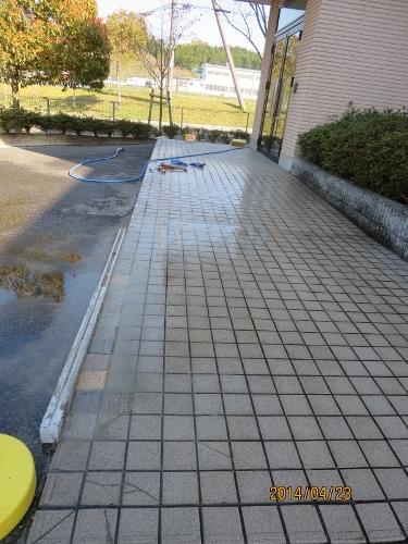 4年ぶり日本での春、少しホッです_b0100062_23174367.jpg