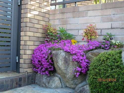 4年ぶり日本での春、少しホッです_b0100062_23225035.jpg